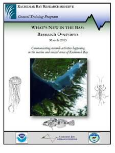 WNITB 2013 cover