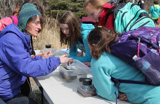 Jess sharing marine invertebrates and tidepool etiquette with students at her Salmon Celebration station.